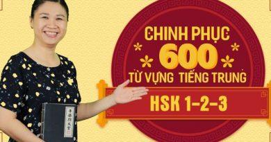 Chinh phục 600 từ vựng tiếng Trung HSK 1-2-3